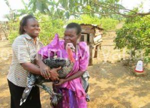 supporting-women-groups-with-seed-birds