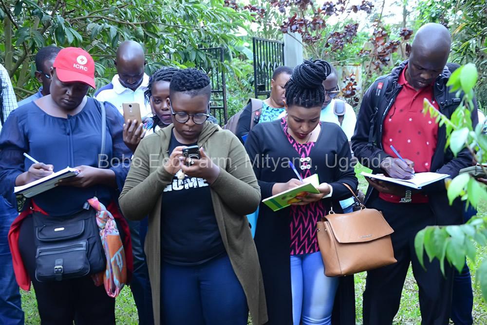 Master of Development Studies students on a study tour at Bobo Eco Farm2