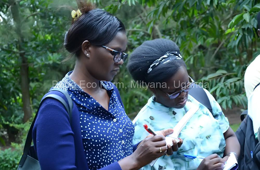 Master of Development Studies students on a study tour at Bobo Eco Farm3